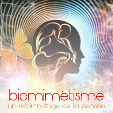 biomimétisme: vers un reformatage indolore de la pensée