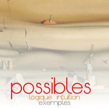 """anatomie des possibles: qu'est-ce qu'un """"BON"""" possible?"""