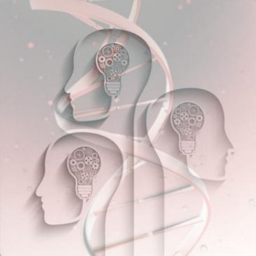 La génétique va-t-elle permettre d'améliorer l'intelligence?