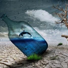le futur de la vie sauvage et de ses paradoxes