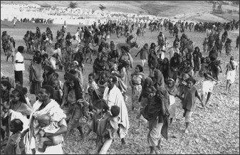 Famine_Sahel