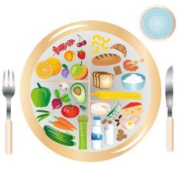 futur en gestation: l'alimentaire comme modèle